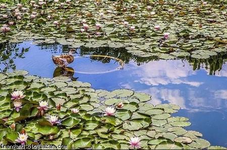 گردشگری اصفهان,باغ گلها اصفهان,جاذبه های گردشگری اصفهان