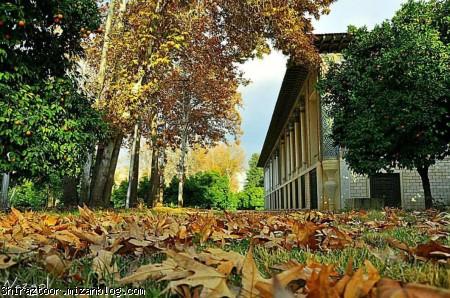 باغ عفیف آباد,باغ عفیف آباد شیراز,شیراز,گردشگری شیراز