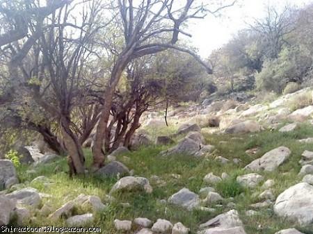 کوه برز و منطقه سیاهچال,فارس,فیروزآباد