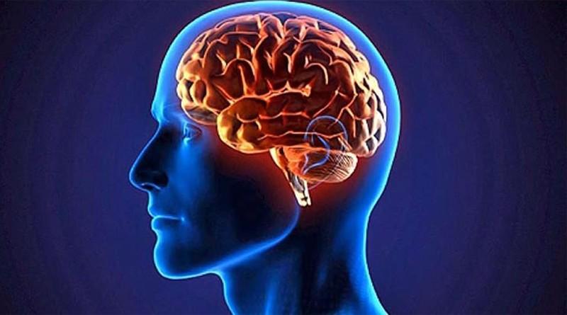12 راه برای جوان نگه داشتن مغز