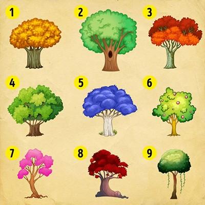 شخصیت شناسی خود با انتخاب یک درخت