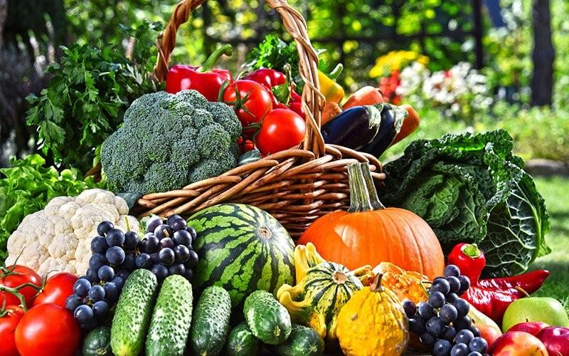 رژیم غذایی متعادل و سالم چیست؟