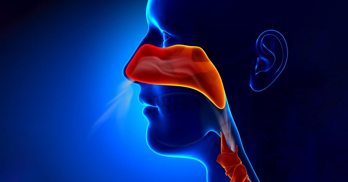 سینوزیت چیست وآیا سینوزیت مزمن قابل درمان است؟