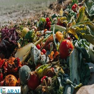 روش های سنتی و نوین بازیافت زباله های غذایی