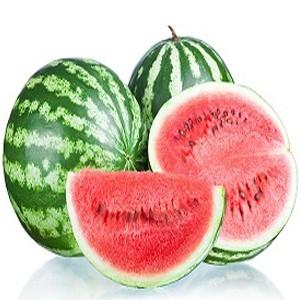 بیماری هندوانه و علائم آن را بشناسیم