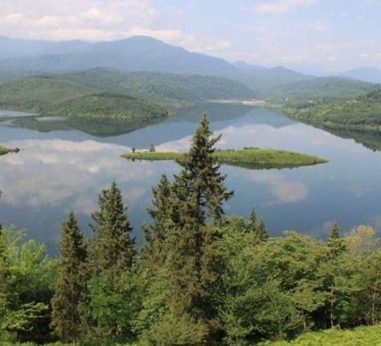 جاذبه گردشگری و طبیعی سد لفور