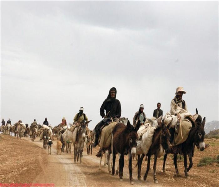 طوایف شهسوان (عشایر در ایران ، شهسوان)
