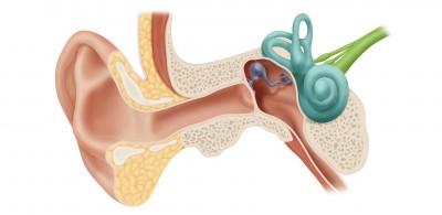 سلامت گوش | علائم و نشانه های رایج اختلالات گوش چیست؟
