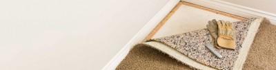 چطور کپک روی فرش و موکت را از بین ببریم