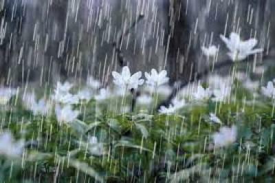 روزگار پر باران
