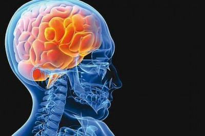مغز خود را نجات دهید