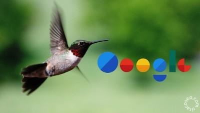 الگوریتم مرغ مگس خوار hummingbird چیست؟