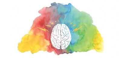 رفتار ضد اجتماعی و ساختار مغز