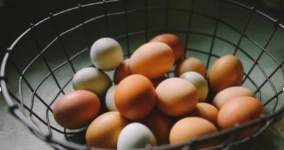 چه تفاوتی بین تخم های سفید و قهوه ای وجود دارد