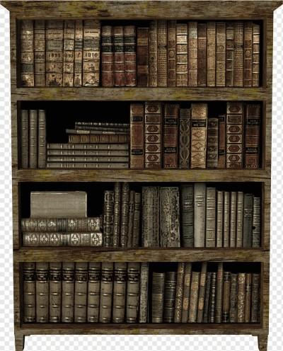 هنر قفسه بندی کتاب و انواع چیدمان کتاب