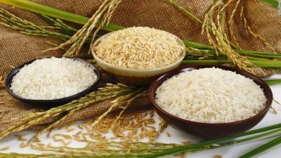 برنج: واقعیت های تغذیه ای و اثرات سلامتی