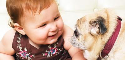 رابطه سگها با نوزادان و چگونگی رفتار آنها