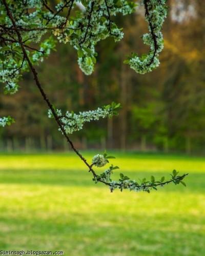 ای کاش عظمت در نگاه تو باشد نه در آنچه بدان می نگری...[آپدیت شد]