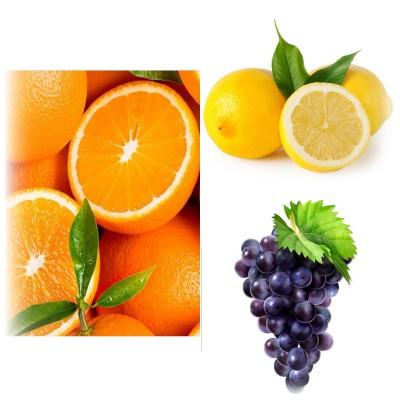 میوه هایی که هم غذا است وهم دوا