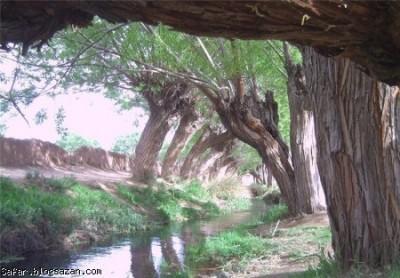 چشمه غربالبیز - طبیعتی شگفت انگیز [آپدیت شد]