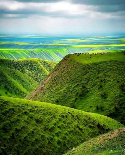 ترکمن صحرا - گلستان