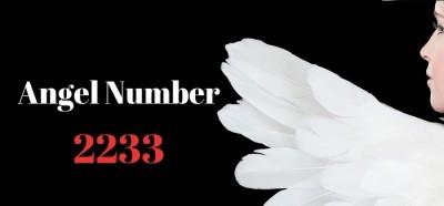 عدد فرشته 2233
