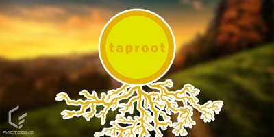 Taproot چیست؟ فناوری افزایش حریم خصوصی بیت کوین