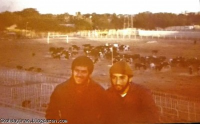 شهید منصور داروئیان و اقای شاوری در استادیوم آبادان سال۵۹ جمع آوری و نگهداری حیوانات از ابادان